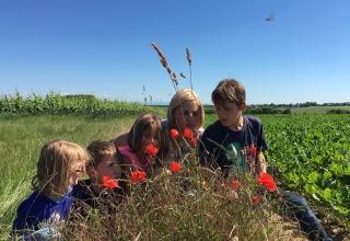Familien-Auszeit-Holland-5