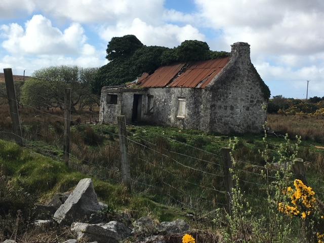 Irland-Reise-8