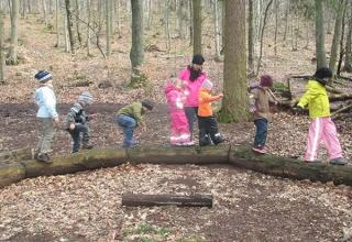 Balancieren-auf-den-Baumstaemmen