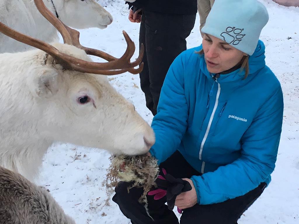 Lappland-Abenteuer-18