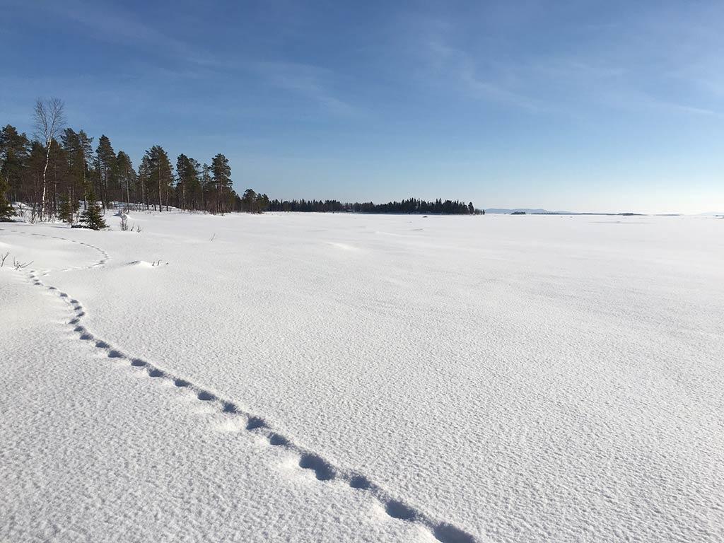 Schweden-30