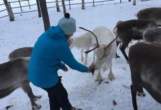 Lappland-Abenteuer-16