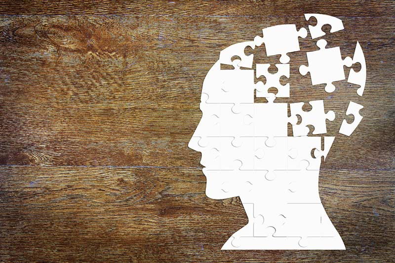 Puzzle im Gehirn