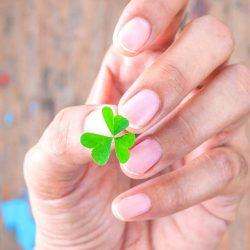 Ein Kleeblatt zwischen den Fingern halten