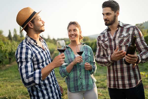 Weinkeller Events • Genussrallye durch die Weinberge